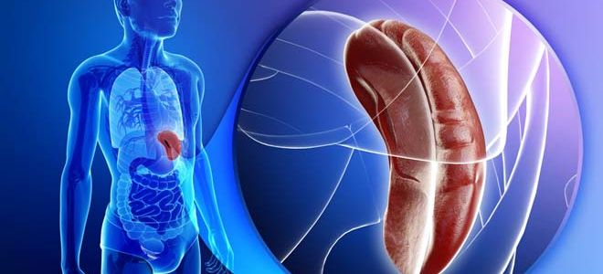 Причины и способы лечения кисты селезенки