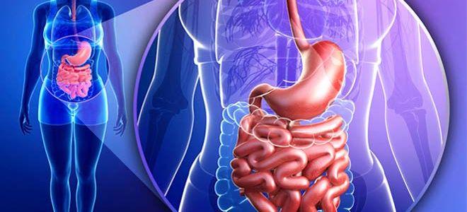 Причины и симптомы полипов кишечника