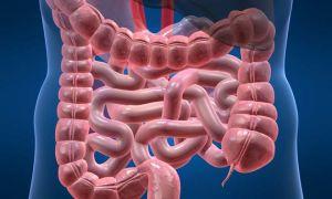 Что такое киста в кишечнике и симптомы патологии