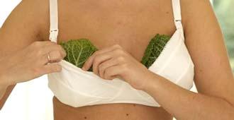прикладывание капустного листа к груди